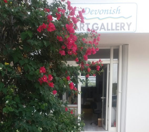 Art Gallery with hibiscus flowers